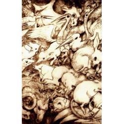 Bestiari lemosin - Marcelle Delpastre